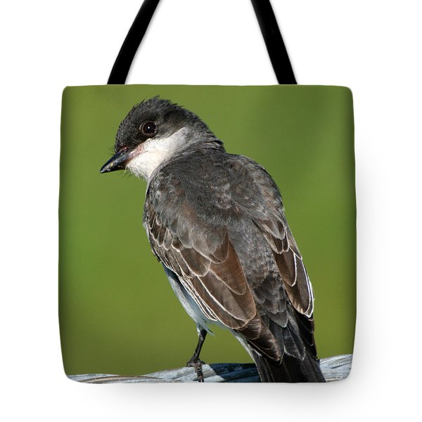 Kingbird On A Wire Tote Bag