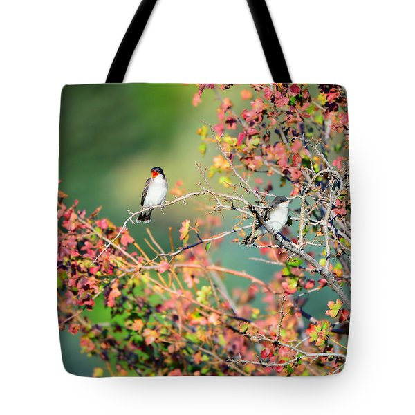 Kingbird Pair Tote Bag