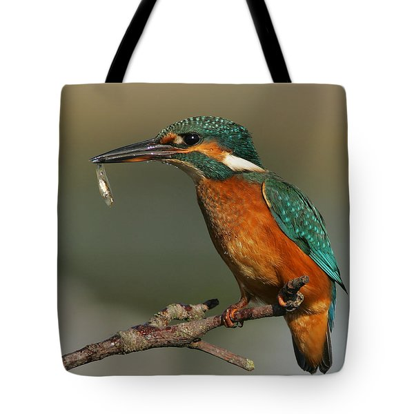 Kingfisher2 Tote Bag