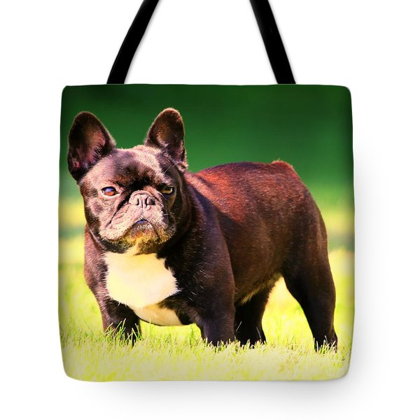 King's Frenchie - French Bulldog Tote Bag