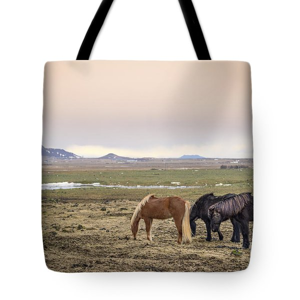 Kings Of The Nordic Twilight Tote Bag