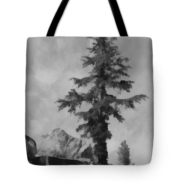Kings River Canyon Tote Bag