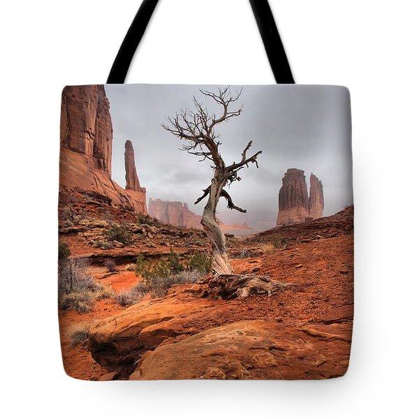 King's Tree Tote Bag by David Andersen