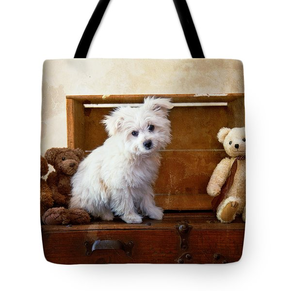 Kip And Friends Tote Bag by Toni Hopper