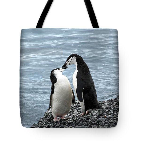 Kiss Me You Fool Tote Bag