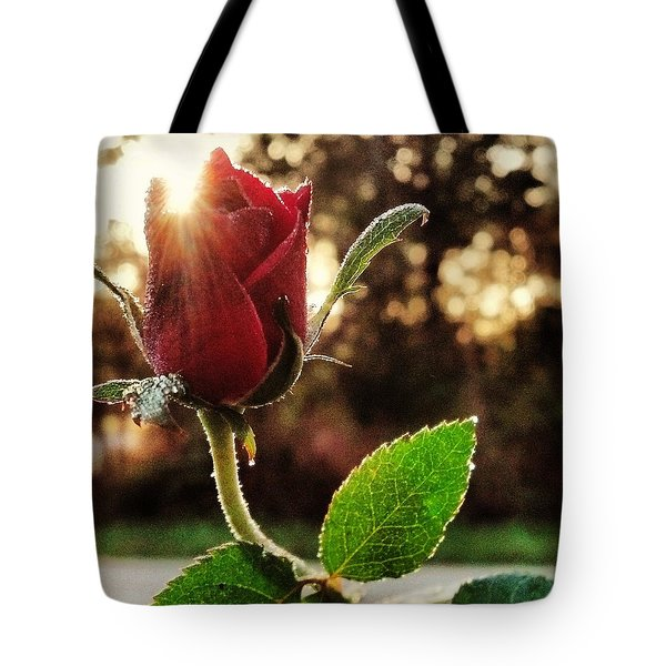 Kiss Of The Ross Tote Bag