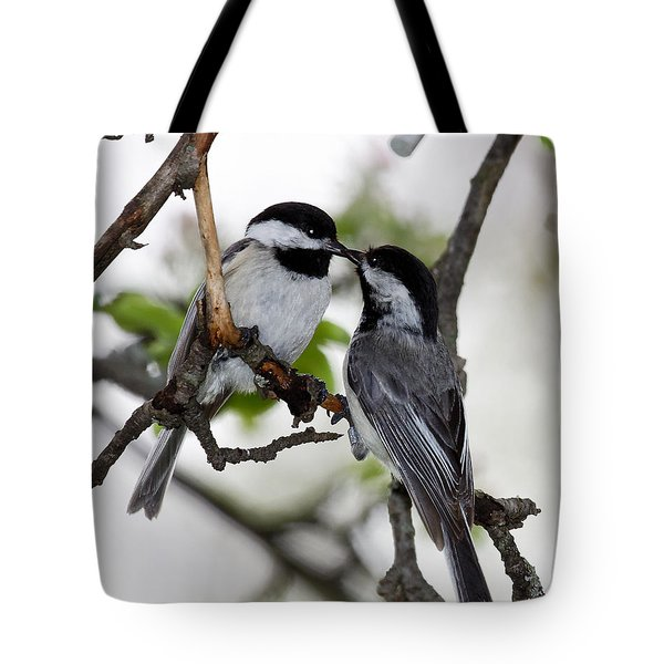 Kissing Chickadees Tote Bag