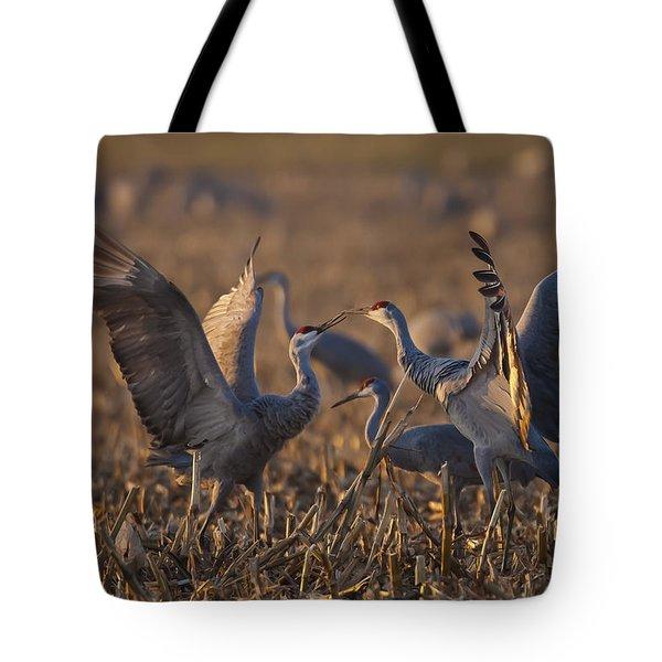 Kissing Sandhills Tote Bag