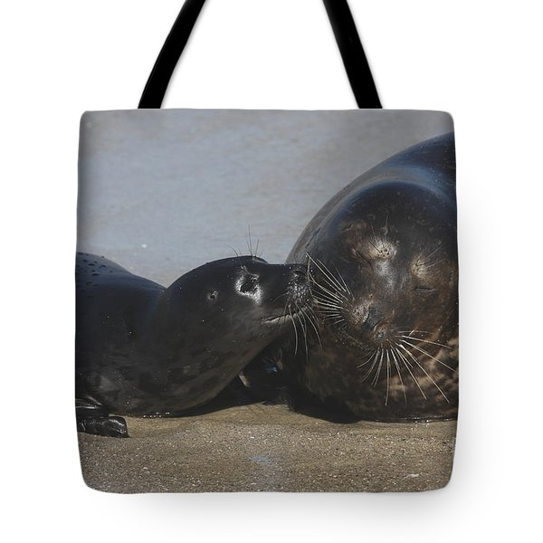 Kissing Seals Tote Bag
