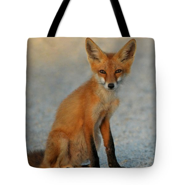 Tote Bag featuring the photograph Kit by Olivia Hardwicke