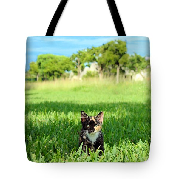 Tote Bag featuring the photograph Kitten by Carsten Reisinger