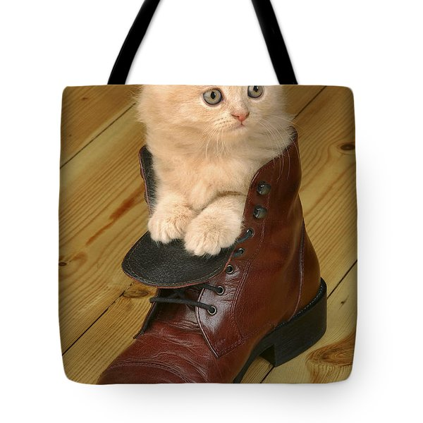 Kitten In Shoe Ck181 Tote Bag by Greg Cuddiford