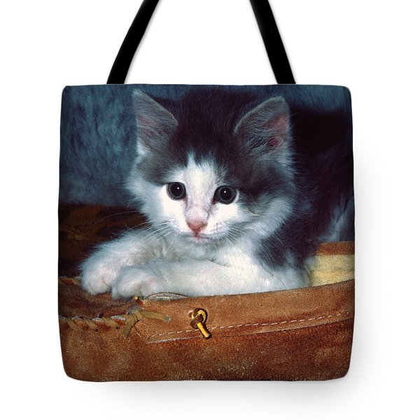 Kitten In Slipper Tote Bag by Sally Weigand