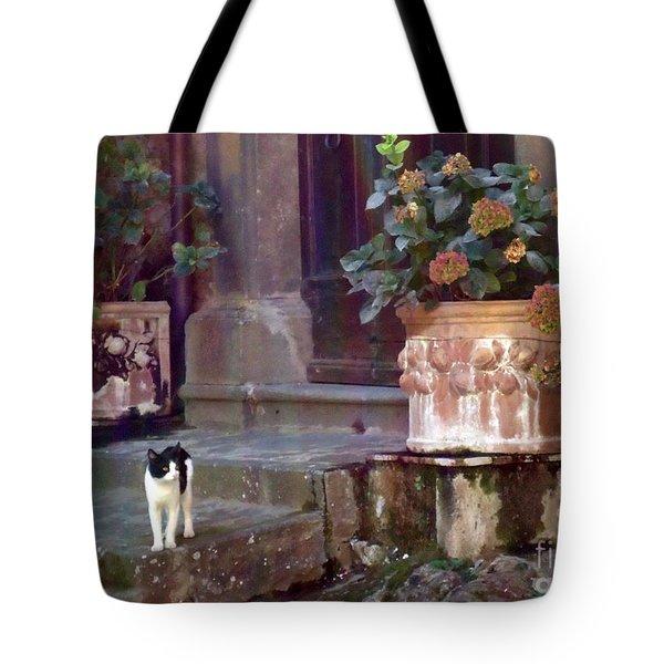 Kitten Italiano Tote Bag by Barbie Corbett-Newmin