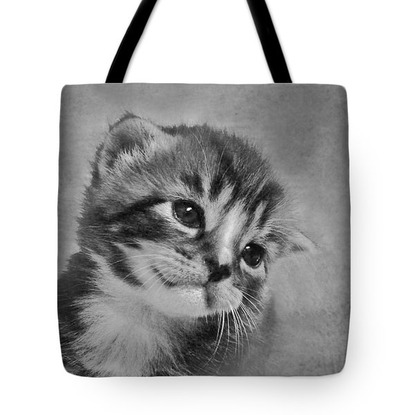 Kitten Just For You Tote Bag