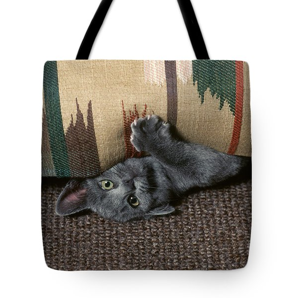Kitten Under Couch Tote Bag by James L. Amos