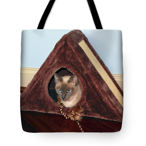 Kitty A-frame Tote Bag by Sally Weigand