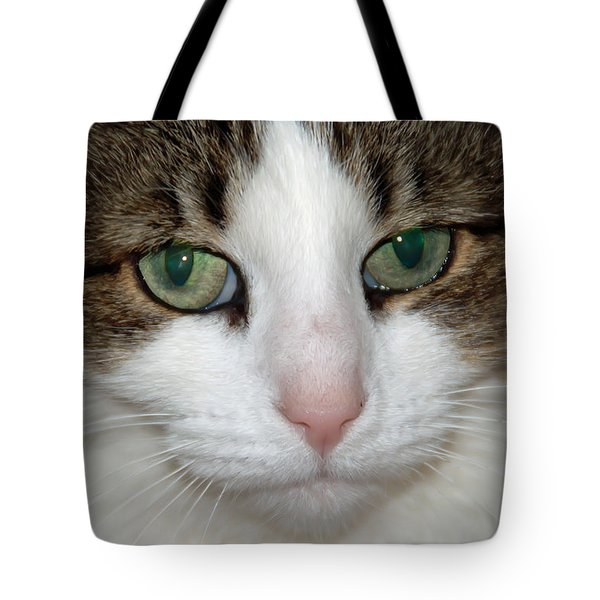 Kitty Tote Bag by Aimee L Maher Photography and Art Visit ALMGallerydotcom