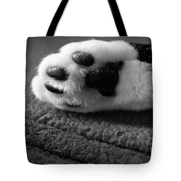 Kitty Paw Close Up Tote Bag by Sharon Dominick