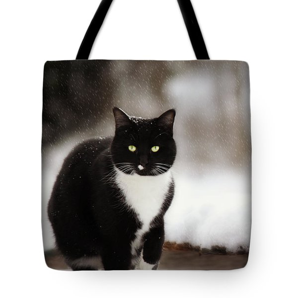 Kitty Snow Play Tote Bag by Melanie Lankford Photography