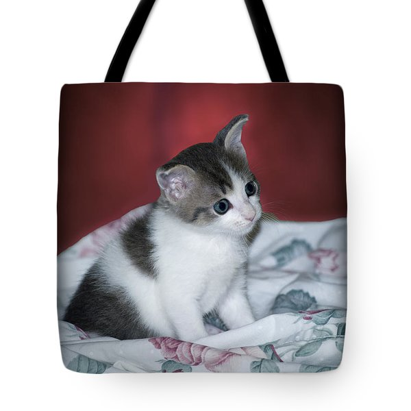 Kitty Taking A Moment To Chill Tote Bag by Thomas Woolworth