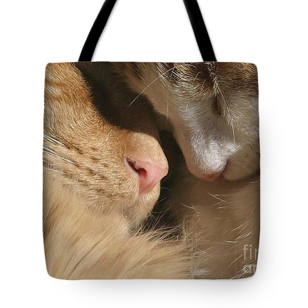 Kity Kat Love Tote Bag by Living Color Photography Lorraine Lynch