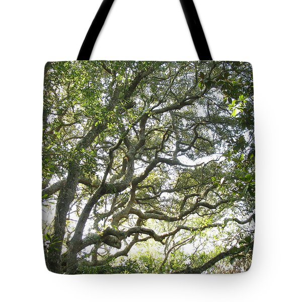 Knarly Oak Tote Bag