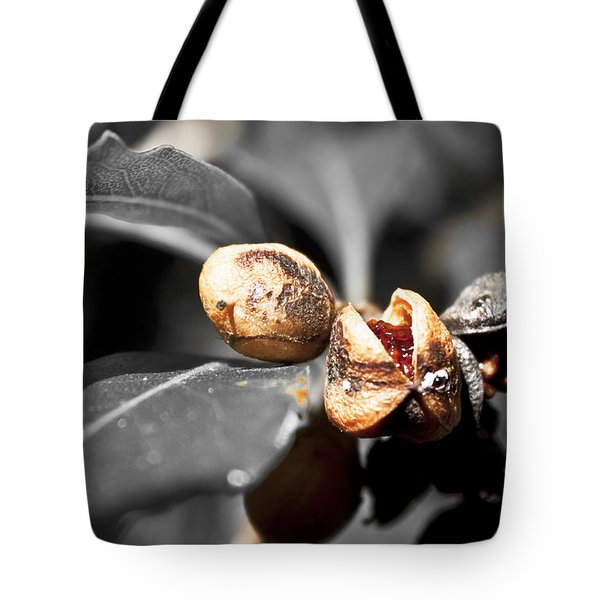 Tote Bag featuring the photograph Knew Seeds Of Complentation by Miroslava Jurcik