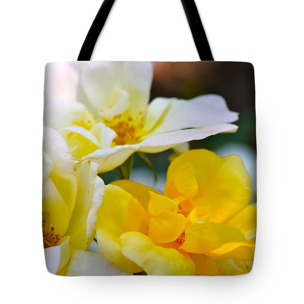 Knockout Tote Bag by Cathy Dee Janes