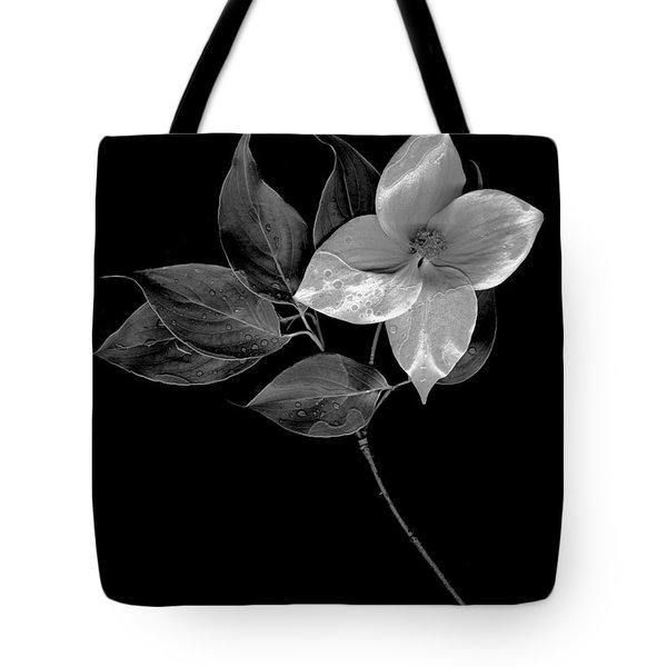 Kousa Dogwood In Black And White Tote Bag