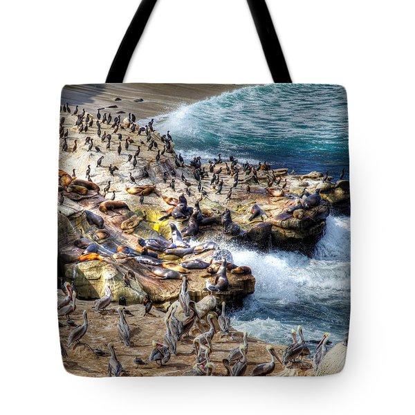 La Jolla Cove Wildlife Tote Bag