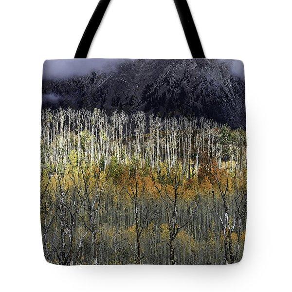 La Sal Seasonings Tote Bag