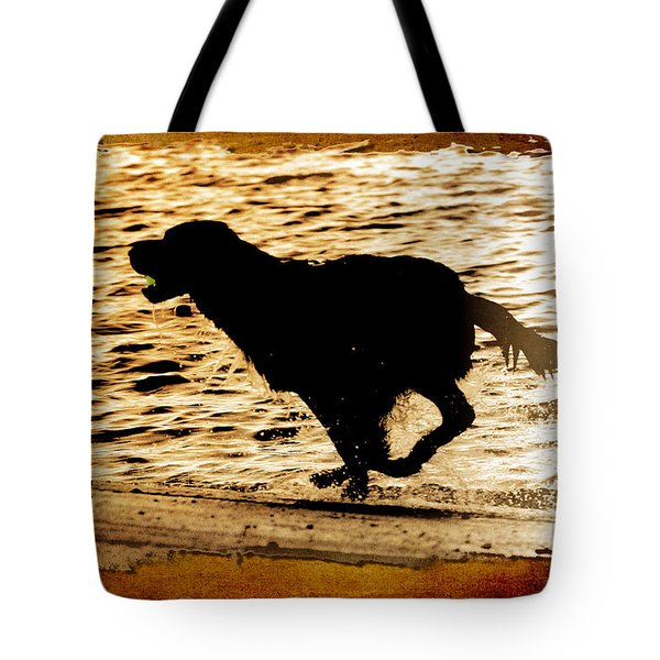 Tote Bag featuring the photograph Labrador Silhouette by Eleanor Abramson