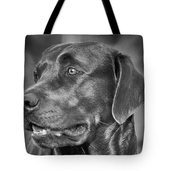 Labrador Sweetie Tote Bag