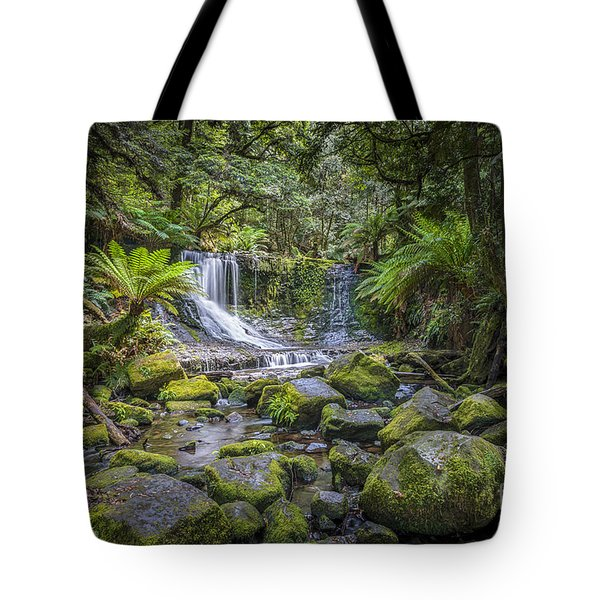Tote Bag featuring the photograph Lady Barron Falls II by Ray Warren