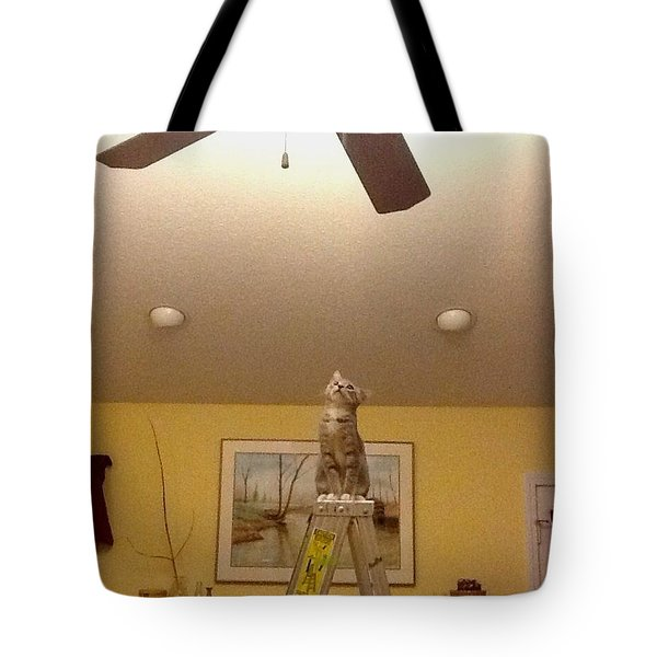 Ladder Cat Tote Bag by Stacy C Bottoms