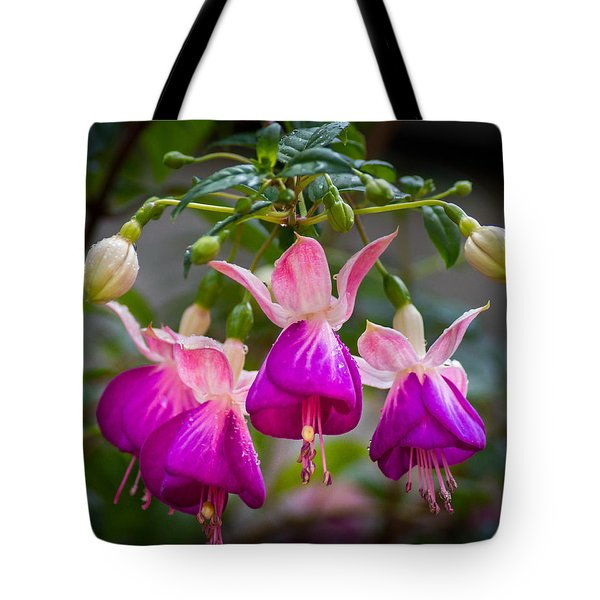 Ladies Dancing Tote Bag