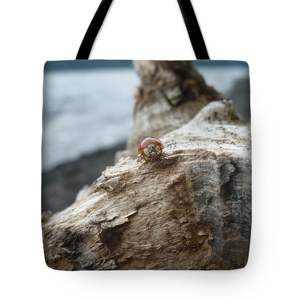Lady Bug A Drift Tote Bag by Nicki Bennett