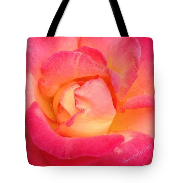 Lady Diana Rose, A #macro #rose For The Tote Bag