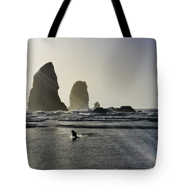 Lady Jessica Of The Great Northwest Tote Bag by Susan Molnar