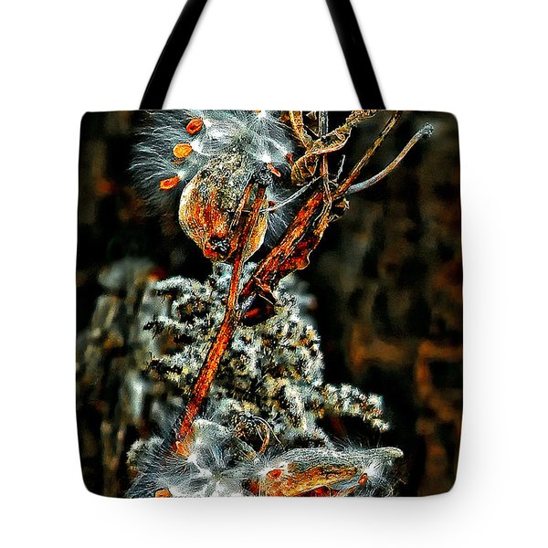 Lady Of The Dance Tote Bag by Steve Harrington