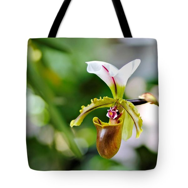 Lady Slipper Tote Bag