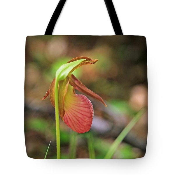 Lady Slippers At Moore State Park 4 Tote Bag
