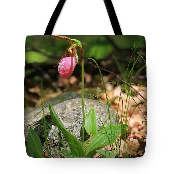 Lady Slippers At Moore State Park 3 Tote Bag