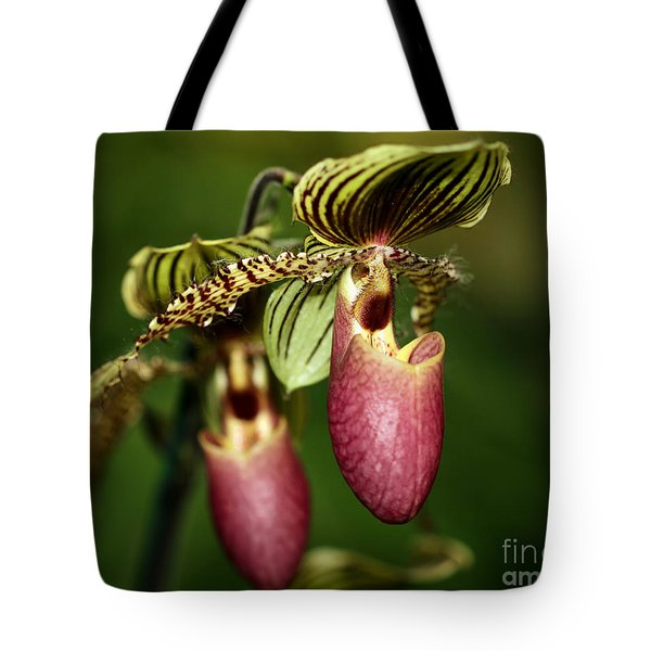 Lady Slipper Orchid Twins Tote Bag
