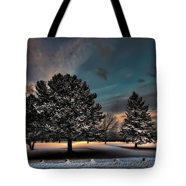 Lady Winter  Bringing A Cold Snap Tote Bag