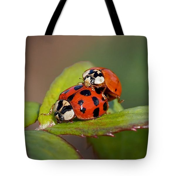 Ladybird Coupling Tote Bag
