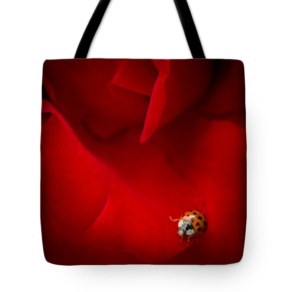 Tote Bag featuring the photograph Ladybird In Rose by Peta Thames