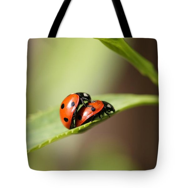 Ladybird Love Tote Bag by Mark Severn