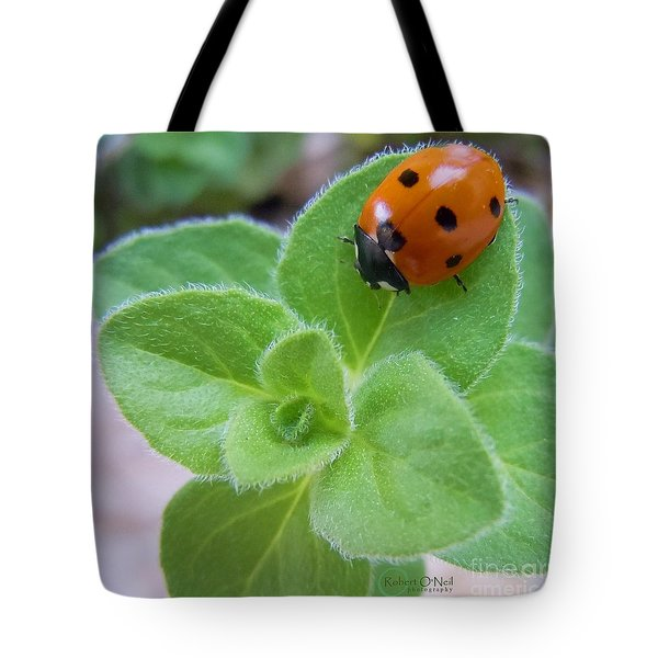 Tote Bag featuring the photograph Ladybug And Oregano by Robert ONeil